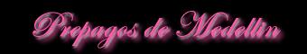 www.prepagosdemedellin.lsl.com