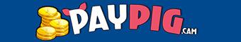 www.paypig.cam