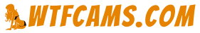 www.wtfcams.com
